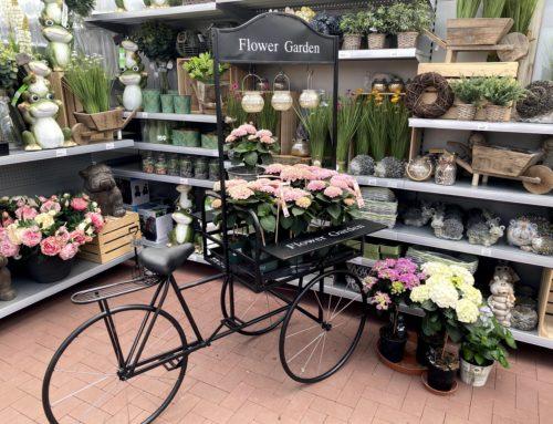 Dekorace pro Váš domov a zahradu