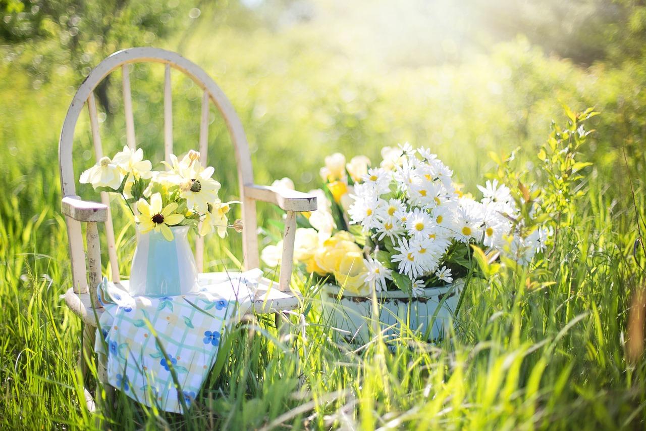 léto v zahradě